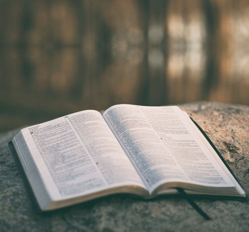 Open Bible during reading